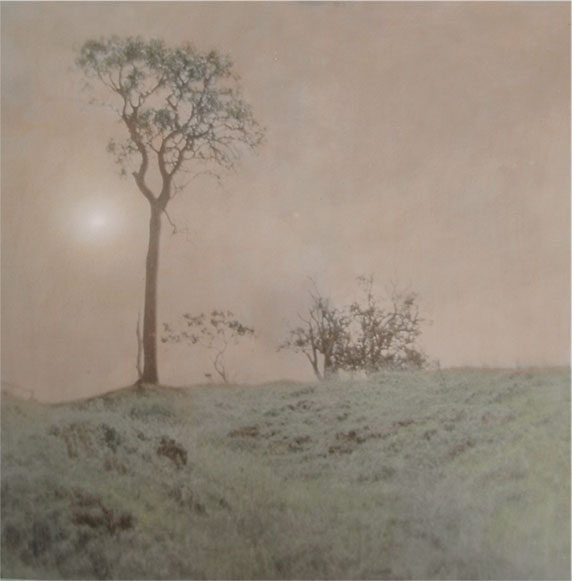 After an Age of Leaves and Feathers - Hand Colored Silver Gelatin Photography by Gwen Arkin